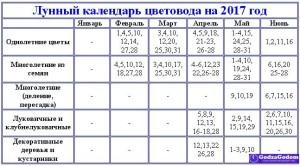 lunnyj-posevnoj-kalendar-tsvetovodov-2017